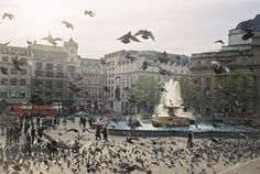 Trafalgar Square | Trafalgar Square in London, England | World Visits