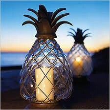 Romantic tropical lantern