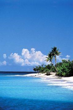 Blue skies, white sand, calm waters ...... a beach somewhere