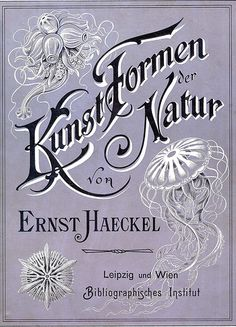 The Beauty of Forms in Nature, 1904 by Ernst Haeckel