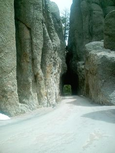 What not to Miss:  The Black Hills, South Dakota The picture here shows a small tunnel, on Needles Highway, that looks like you won't fit, but there is plenty of room. This is a great state to visit. We stayed at the   State Game Lodge in Custer State Park, and  were never far from any of the attractions. The buffalo are amazing and the highlight of my trip. They are free roaming at the park.