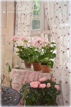 fresh and sweet cottage style.pink geraniums on window sill Rose Cottage, Shabby Cottage, Cottage Style, Shabby Chic Style, Shabby Chic Decor, Pretty In Pink, Beautiful Flowers, Shabby Chic Zimmer, Pink Geranium