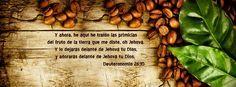"""He traído las primicias - Deuteronomio 26:10 """"Y ahora, he aquí he traído las primicias del fruto de la tierra que me diste, oh Jehová. Y lo dejarás delante de Jehová tu Dios, y adorarás delante de Jehová tu Dios."""""""