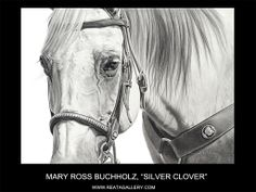 Charcoal Drawing Ideas Silver Clover by Mary Ross Buchholz Graphite Horse Drawings, Animal Drawings, Cute Drawings, Pencil Drawings, Charcoal Drawings, Drawing Animals, Pencil Art, Horse Artwork, Equine Art