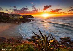 Hirsty photography, 'morning glow' Tamarama beach, Australia