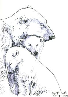 Polar Bear sketch by silvercrossfox on DeviantArt – Tattoo Sketches & Tattoo Drawings Baby Animal Drawings, Animal Sketches, Cute Drawings, Drawing Sketches, Drawings Of Bears, Polar Bear Drawing, Polar Bear Tattoo, Baby Bear Tattoo, Grizzly Bear Tattoos