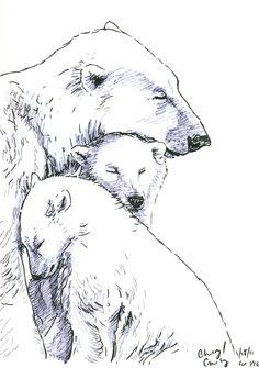 Polar Bear Orally Pleased By Black Cub