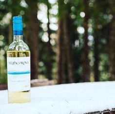 If the spring is slow in coming, you wait for it enjoying a good #Mezzacorona Pinot Grigio. winegram.it share your wine