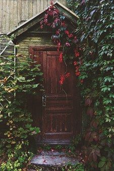 Door, Entrance, Wooden, Ivy