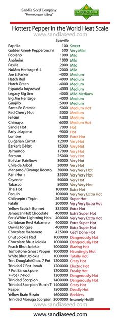 his chart shows the Sandia Seed Company peppers listed by scoville heat units. The superhot peppers at the bottom of the list have similar levels of extreme heat, and any one of them could be the hottest pepper this season. The Trinidad Moruga Scorpion ha Nutribullet, Pepper Scale, Worlds Hottest Pepper, Hottest Pepper List, Hottest Chili Pepper, Cooking Tips, Cooking Recipes, Food Tips, Coconut Oil Weight Loss