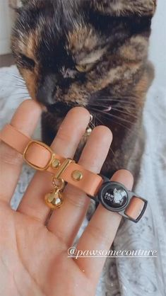 Have you seen our new Cat Collars yet? Made from beautiful soft leather with a quick release safety buckle, our breakaway leather cat collars are super comfortable against your cats skin. #cats #catcollar #pawsomecouture #catlady #catgift #catsupplies Leather Cat Collars, Cat Skin, Cat Supplies, Cat Gifts, Cat Toys, Cat Breeds, Cat Lady, Soft Leather, Safety