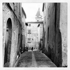 In the center of #seggiano #amiata #maremma