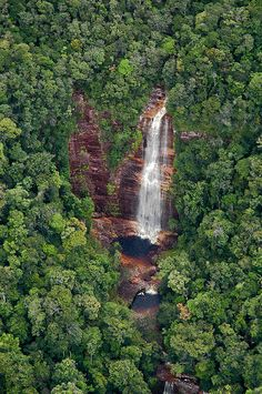 Waterfall in the jungle - Canaima National Park, Venezuela. Travel Share and Enjoy! Places To Travel, Places To See, Places Around The World, Around The Worlds, Beautiful World, Beautiful Places, Parque Natural, Photos Voyages, Parc National