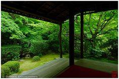 Garden at Keishun-in Subtemple at Myoshin-ji Temple : copyright Damien Douxchamps