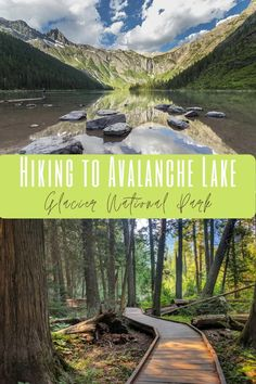 Avalanche Lake Trail: One of the Best Day Hikes in Glacier National Park