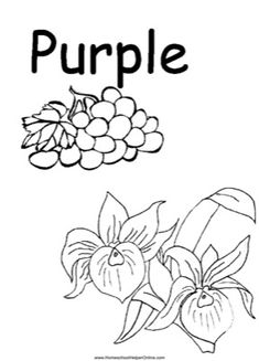 Homeschool Helper Online – Free printables, lapbooks, and unit studies for your classroom Use this color worksheet to teach your preschooler the color purple. You can color the grapes and purple flowers purple. Coloring Worksheets For Kindergarten, Color Worksheets For Preschool, Kindergarten Colors, Preschool Colors, Preschool Coloring Pages, Alphabet Coloring Pages, Preschool Printables, Preschool Alphabet, Alphabet Worksheets