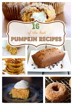 16 of the best pumpkin dessert recipes! www.skiptomylou.org