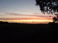 Sunset lane at Willarong