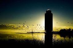 Sunrise in Schleswig, Germany | Sonnenaufgang in Schleswig | MARCO POLO user Pepinoa