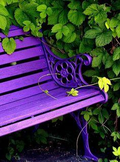 Bohemian Garden Spaces paint a bench purple! @ Home Improvement Ideaspaint a bench purple! @ Home Improvement Ideas Purple Love, All Things Purple, Shades Of Purple, Green And Purple, Bright Purple, Bright Colors, Purple Stuff, Deep Purple, Purple Flowers