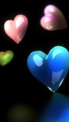 Love Heartsbhh