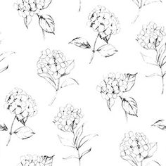 Wallpaper Inn Store - Grey Hydrangeas on White , R299,95 (http://shop.wallpaperinn.co.za/grey-hydrangeas-on-white/)