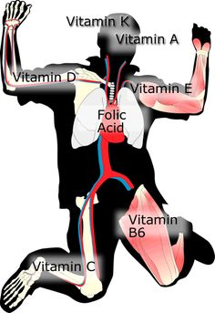 Great image - really described where vitamins are used in the body.