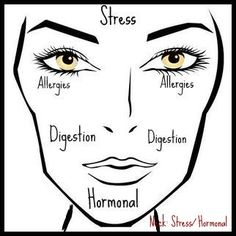 Face Chart: Acne Tells all by Haute31   good to know im always stressed and hormonal -_-