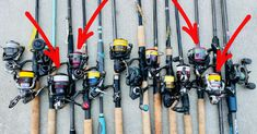 What Is The Best Spinning Reel Size For Your Inshore Setup