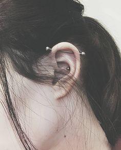 45 vind-ik-leuks, 7 reacties - tessa 🌿 (@tjwx) op Instagram: 'Uudet beibet #industrial #innerconch #pierced' Ear Piercings Chart, Ear Piercings Rook, Cute Piercings, Tragus, Piercing Eyebrow, Piercing Tattoo, Piercing Industrial Oreja, Tattoo Prices, Head Tattoos