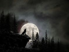 wolf silhouette tattoo - In The Night between 23 and 24 January, The Moon Will Become a WOLF MOON Turning Point for Many People Wolf Silhouette, Wolf Tattoos, Wolf Spirit, Spirit Animal, Wolf Und Mond Tattoo, Wolf Howling At Moon, Wolf And Moon, Howling Wolf Tattoo, Wolf Painting