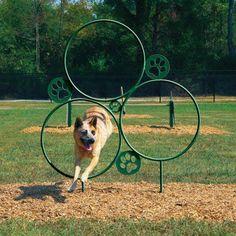 BYO Dog Park Hoop Jump(my mini dog park play item # diy dog park fence Agility Training For Dogs, Dog Agility, Indoor Dog Park, Indoor Pets, Puppy Playground, Dog Yard, Pet Hotel, Dog Rooms, Dog Daycare
