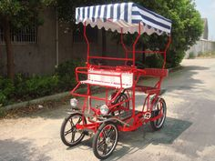 2-seater surrey bike with children seat..... I want this for family bike rides!