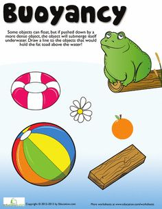 What is Buoyancy?   Sinks, Worksheets and What Is