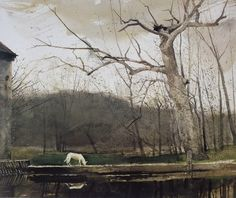 "aizobnomragym: "" Andrew Wyeth ""South Cushing"" """