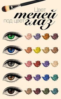 Цвет теней, как это ни удивительно, зависит от цвета самих глаз. Попробуем разобраться во всех тонкостях и выберем цветовую гамму, подходящую вам. Смотрим полную версию инфографики тут - http://www.yapokupayu.ru/blogs/post/infografika-teni-dlya-vek-vybiraem-tsvetovuyu-gammu