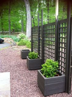 DIY Outdoor Privacy Screen | privacy screens