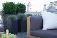Bart & Pieter | Tuinarchitectuur - strak dakterras met planten in potten