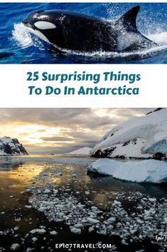 8dc406eb550a7 25 Surprising Things to Do in Antarctica when you venture to the 7th  continent to appreciate