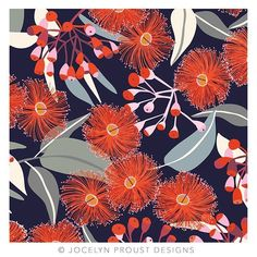 australian flora drawing ~ australian flora + australian flora tattoo + australian flora illustration + australian flora art + australian flora and fauna + australian flora photography + australian flora drawing + australian floral arrangement Australian Wildflowers, Australian Native Flowers, Australian Artists, Flower Drawing Tumblr, Drawing Flowers, Floral Illustration, Plant Painting, Expo, Patterns In Nature