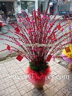 """Nụ tầm xuân là tên một loài hoa được cắt cành chưng vào dịp tết Nguyên Đán rất phổ biến ở nước ta. Nhiều người thắc mắc tên thật của loài cây này là gì, thậm chí đa số người bán và người trồng đều không nắm rõ tên của thật của nó mà cùng gọi nó là """"nụ tầm xuân"""". Chúng tôi chuyên cung cấp nụ tầm xuân giá sỉ, nhận phân phối hàng đi các tỉnh vui lòng liên hệ 0979 472 724 Ms Thùy đặt hàng ! Website: www.nutamxuan.com"""