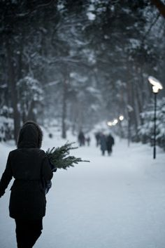 Visiting the graves of loved ones at Christmas, Hietaniemi cemetery, Helsinki, Finland. Winter Magic, Winter Art, Winter Night, Winter Snow, Winter Holidays, Christmas Holidays, Welcome Winter, Hello Winter, Winter Photos