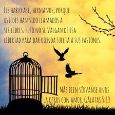 #LIBERTADENCRISTO Gálatas 5:13 Llamada a ser libre. #Gracia #Cruz La gracia no nos pone en libertad para pecar sino que nos libra del pecado. Agradar a Dios! Obedecerle, porque Él me AMÓ primero, me lavó, me ve a través de Cristo (su hija amada) La base de la obediencia es una relación de amor con Él- Juan 14:15 My Lord, Amazing Grace, Spiritual Quotes, Sunday School, Good News, Spirituality, Bible, Inspirational Quotes, Faith