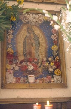Guadalupe portrait 4, via Flickr.