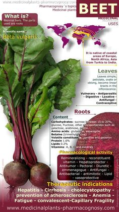 Infographic. Summary of the general characteristics of the Beetroot. Medicinal properties, benefits and uses more common. Beetroot and beet leaves contents. The best way to get the benefit of beets is with Evolv Limitless. I started taking this a few weeks ago for my bum shoulder and I haven't felt this good in TWO YEARS! Contact me for samples :)