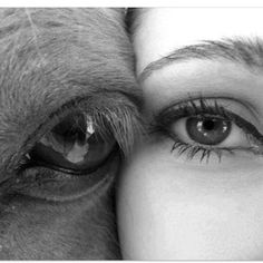 """How Equine Therapy is Helping Couples"". equine therapy is reaching more and more demographics Pretty Horses, Horse Love, Beautiful Horses, Animals Beautiful, Beautiful Eyes, Horse Girl, Pretty Eyes, Cavalo Wallpaper, Foto Cowgirl"