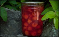 Tart cherry pie filling