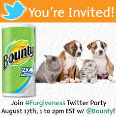 RSVP for @Bounty's Pet #Furgiveness Twitter Party #ad - Open to USA - Win Visa gift cards #giveaway >
