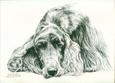 Dog Print Irish Setter by Lyn St. Clair Stubbs ,ebay