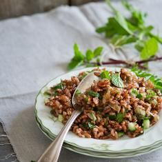 Intriguing! Red Rice & Cucumber Mint Salad with Asian-style Dressing